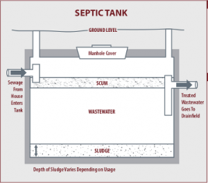 Septic Graphic